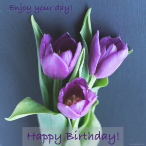 Enjoy your day birthday message