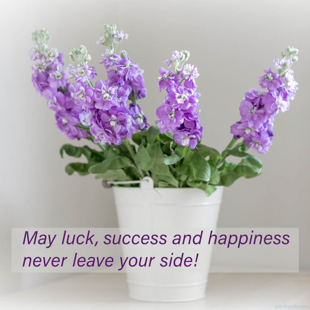 Happy birthday image wishing luck, success, happiness