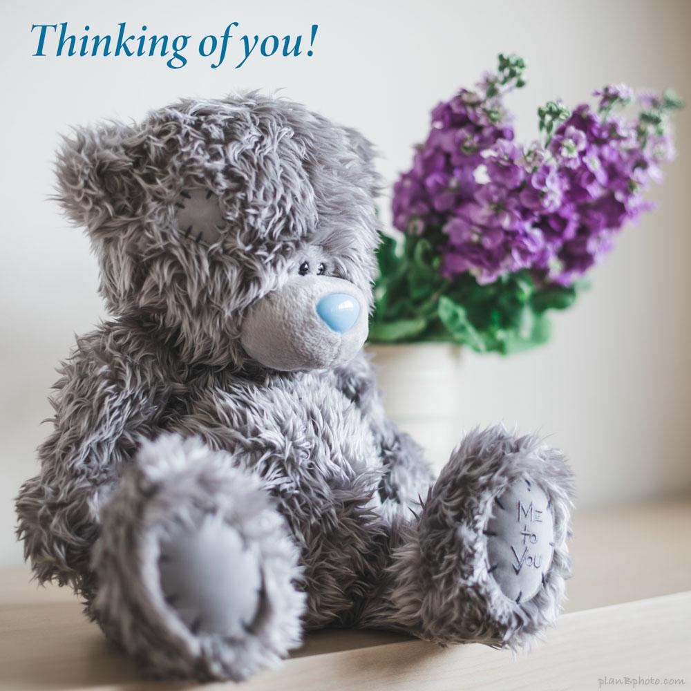 Thinking of you bear