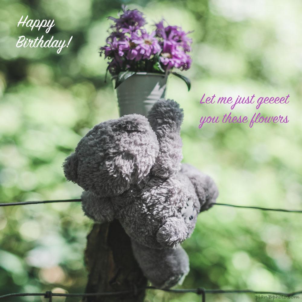teddy bear reaching for flowers