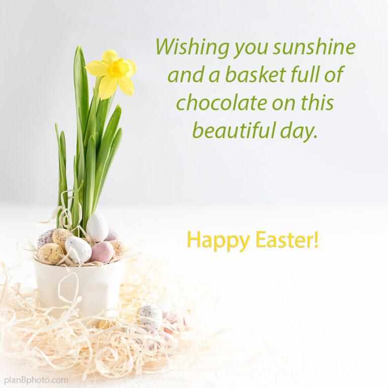 Easter sunshine wish