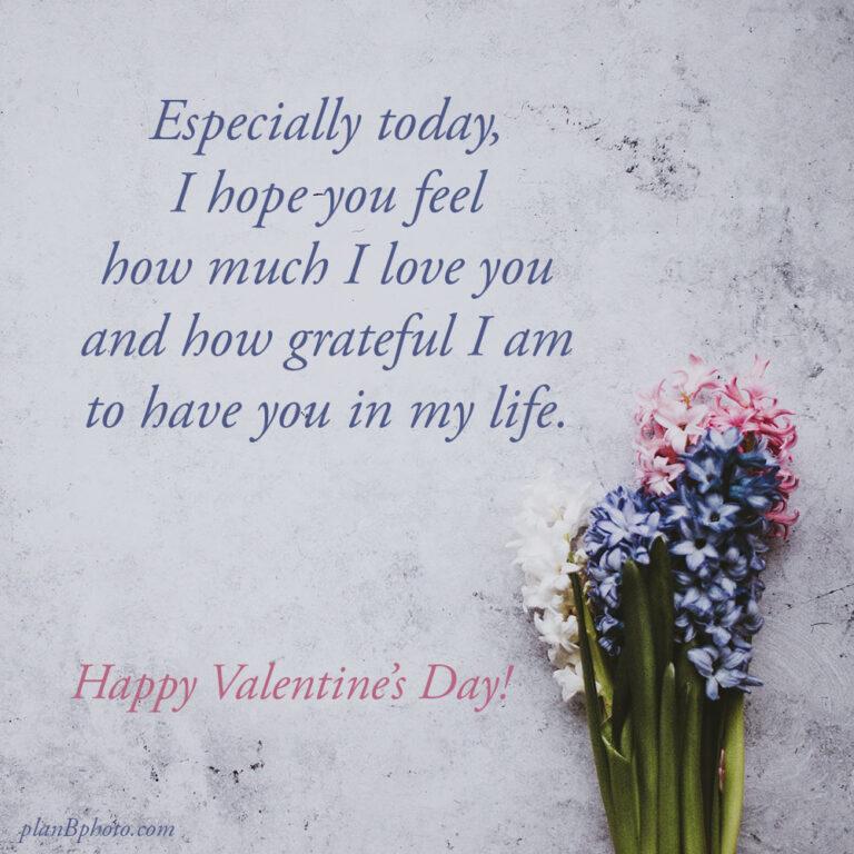 Especially today Valentine's wish
