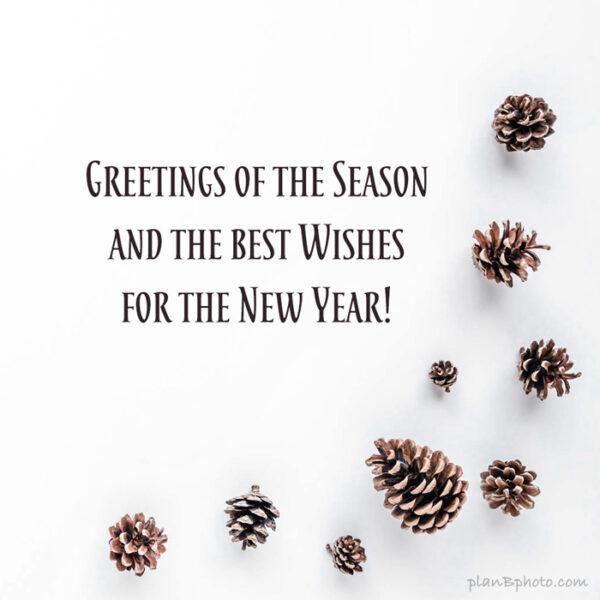 Greetings of the Season