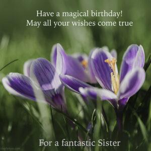 Sister Birthday Wish