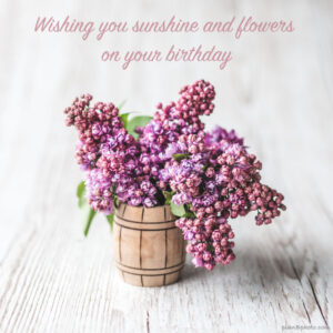 Wishing you sunshine birthday card